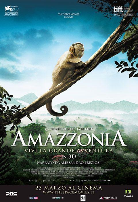 """AMAZZONIA A parte le immagini – oggettivamente splendide – il segreto della bellezza di questo film sta tutto nel montaggio: ciò che sarebbe il naturale corso degli eventi nella foresta amazzonica viene trasformato in una vera e propria sceneggiatura, perfetta per i più piccini, con la giusta dose di tensione ma senza facili concessioni alla violenza. Supera di gran lunga i diretti concorrenti proposti dalla Disney negli ultimi anni. RSVP: """"Chimpanzee"""", """"Rio"""". Voto: 7,5."""