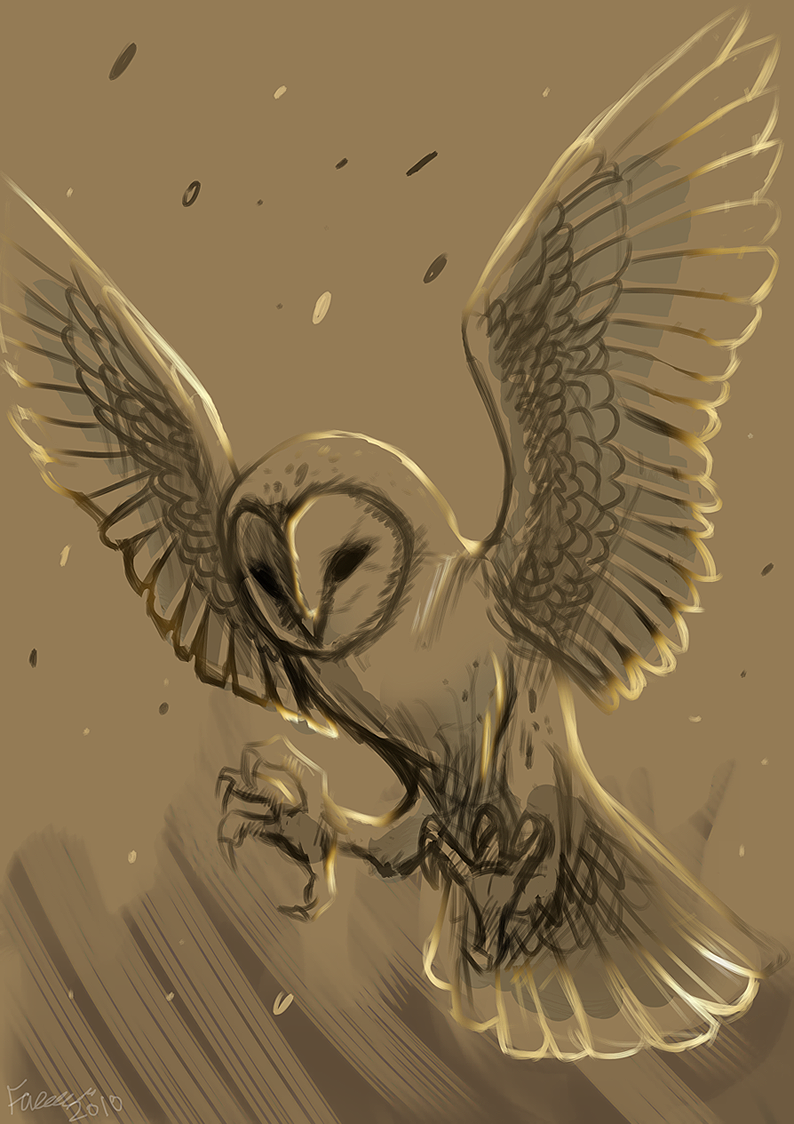 liking the look of this barn owl wip by faezza