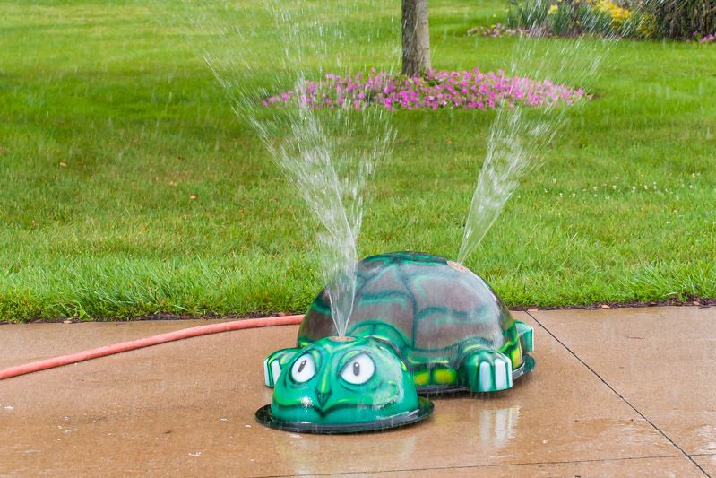 My Portable Splash Pad   Turtle Splash Park