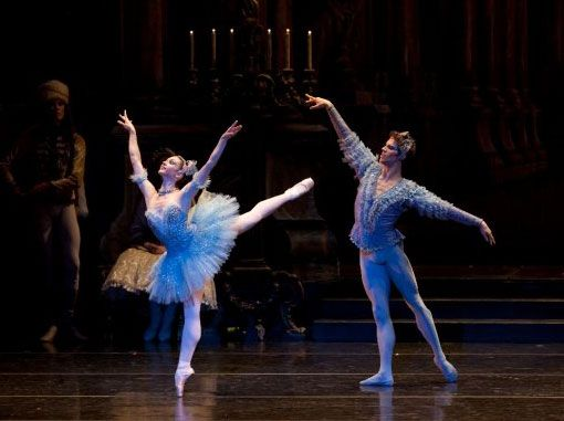 boston ballet sleeping beauty bluebirds ballet