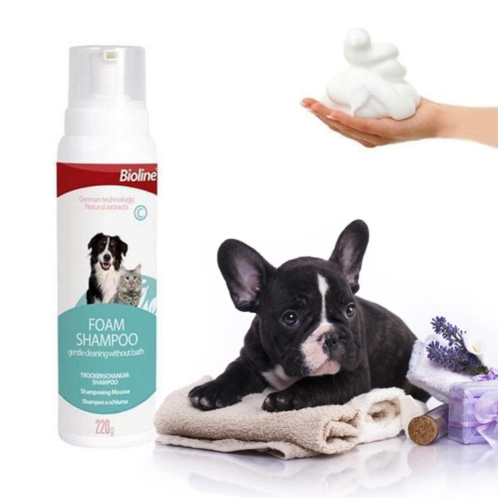 French Bulldog Dry Cleaning Foam Shampoo French Bulldog Best