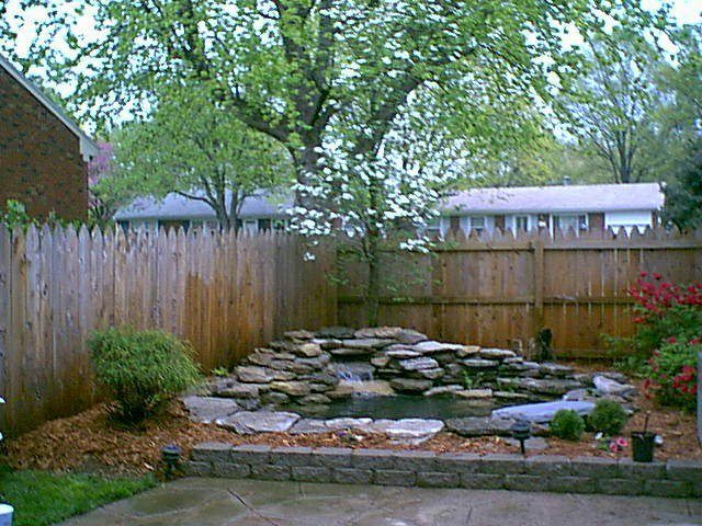 Image Result For Backyard Frog Pond Pacific Northwest