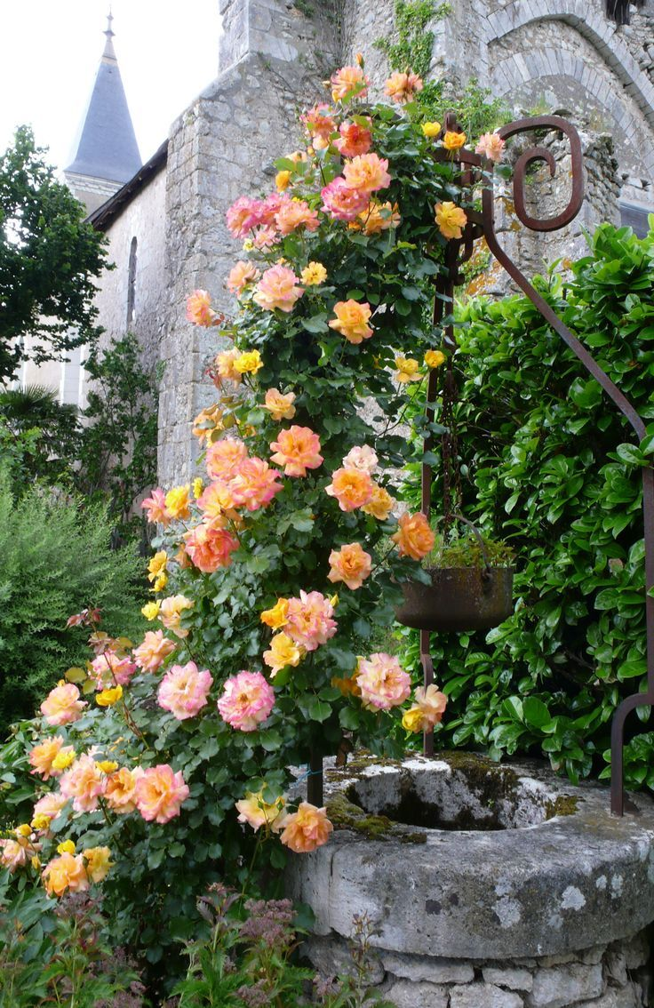 French Gardening French Country Gardens Idolove