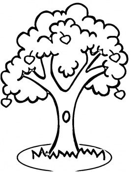 apple tree coloring page super coloring sheen shajara tree