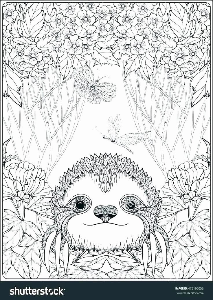 Coloring Pages Of Animals Hard Inspirational Animal Coloring Pages For Free Meriduniya In 2020 Animal Coloring Pages Forest Coloring Pages Cute Coloring Pages