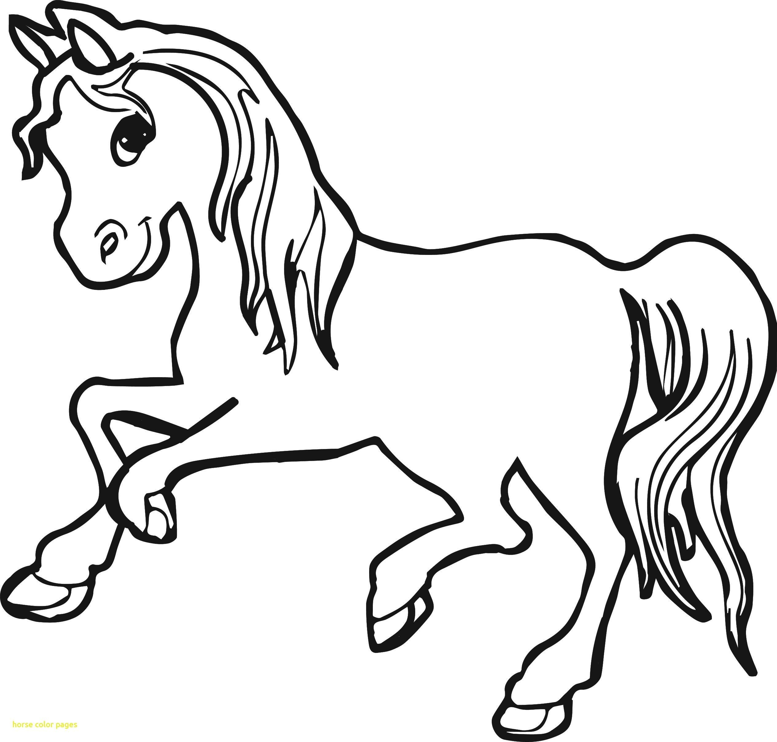 Horse Face Coloring Page From The Thousand Images On The Web With Regards To Horse Face Coloring Pa Horse Coloring Pages Animal Coloring Pages Horse Coloring