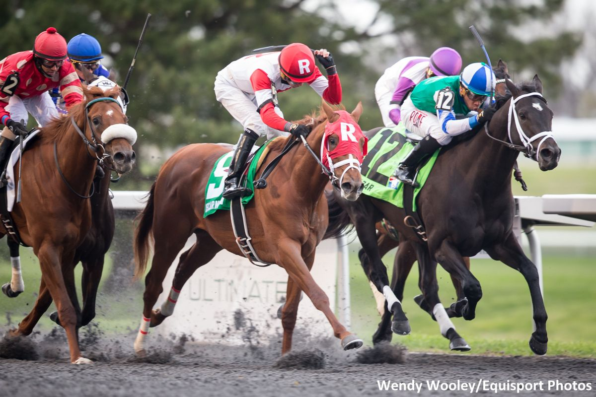 Ramsey Finds 200 000 Investor To Get Oscar Nominated To Kentucky Derby Horse Racing News Paulick Report Horse Racing Kentucky Derby Horses Horses