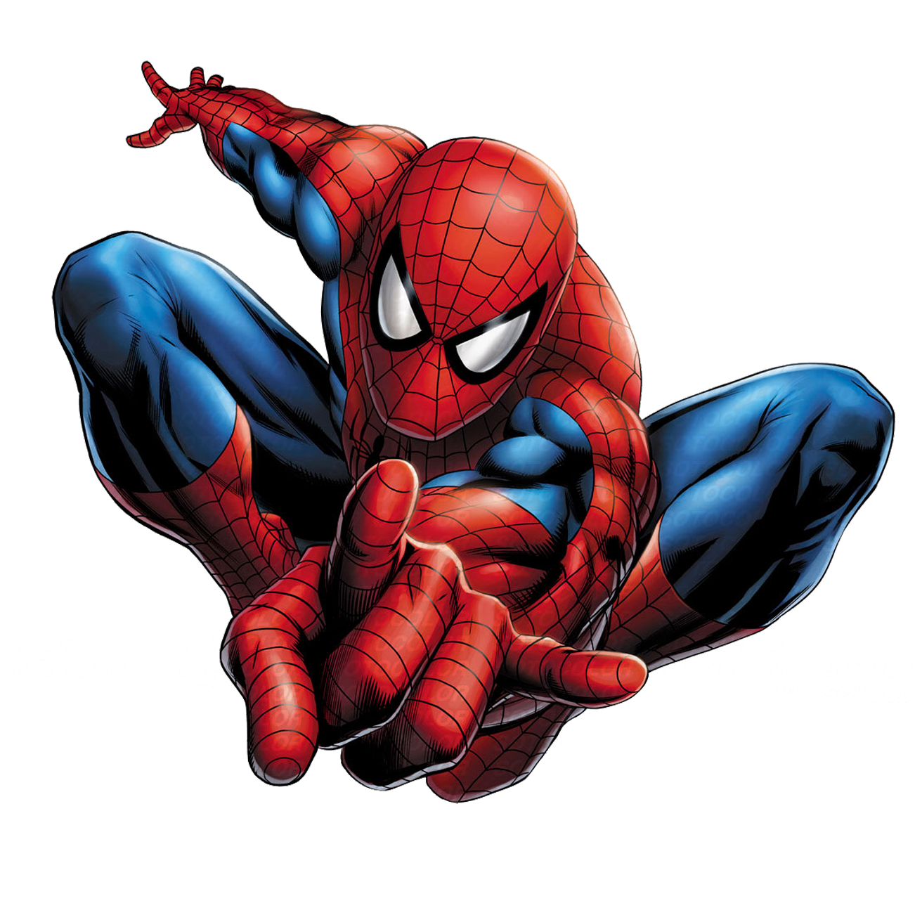 c56585cd0a2ca8b0bc1fab6df87dd955.png (1302×1302) | Spider ...