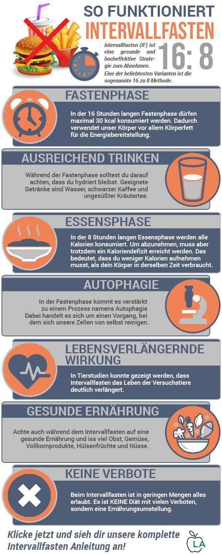 Intervallfasten Anleitung Und Plan 2020 Schnell Und Gesund