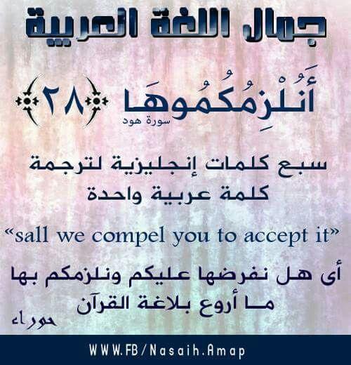جمال اللغة العربية Learn Arabic Alphabet Islamic Phrases Learning Arabic