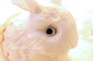Rabbit Tutorial - Floralilies Zucker-Seite!
