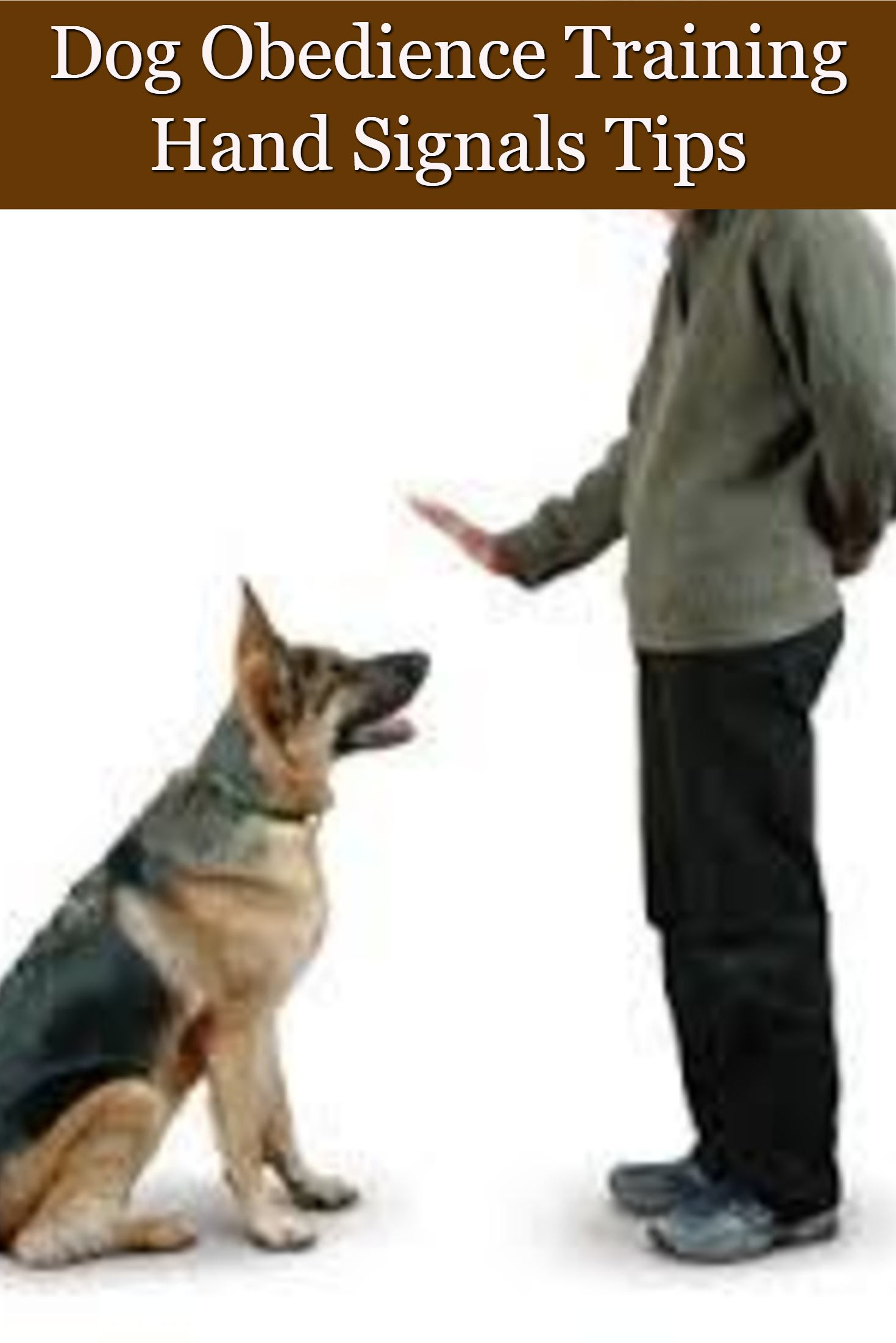 Dog Obedience Training Hand Signals Dog Training Techniques Dog