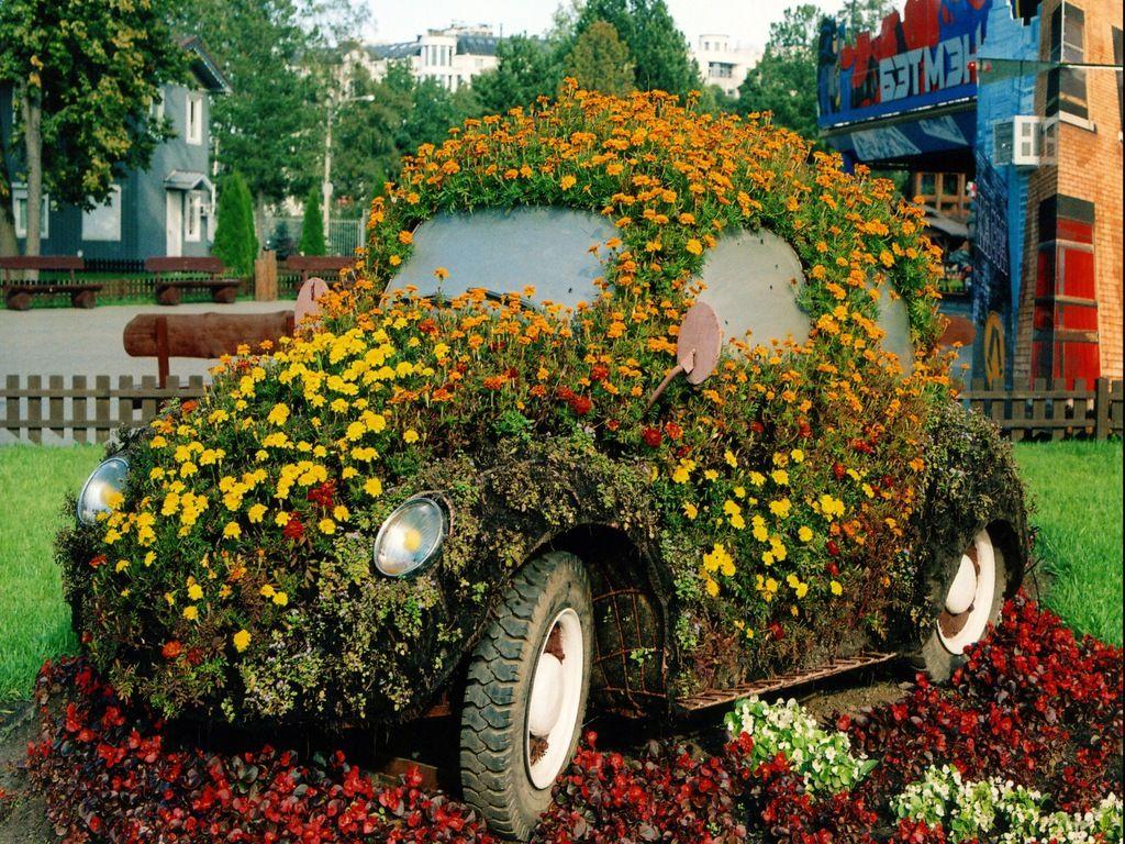 Nice bug! | My FAVORITE car........VW BUG | Pinterest | Gardens ...