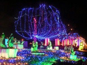 Austin Zilker Park Trail Of Lights Zilker Park Holiday Lights Park Trails