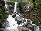 Dawn Falls and King Mountain Loop 5.8 miles     900 ft Larkspur