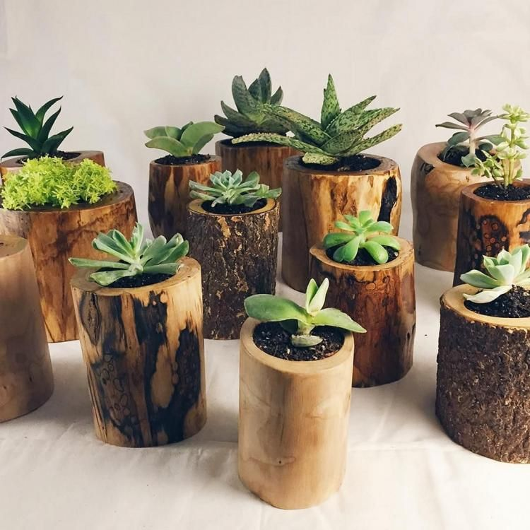 Indoor or Outdoor with Drainage \u2013 Get Succulent Gift Ideas ! Wall planters small Wood Succulent Planter