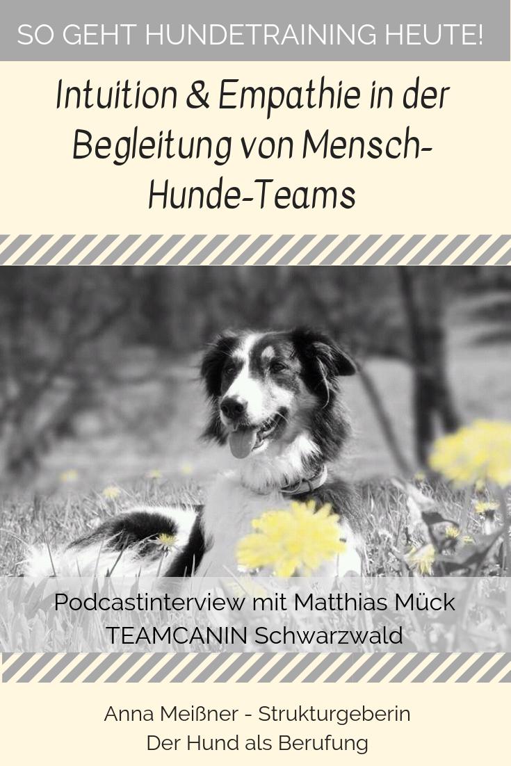 Tl 19 Mit Intuition Und Empathie Mensch Hunde Teams Begleiten Mit Matthias Muck Hunde Hundchen Training Und Hundetraining