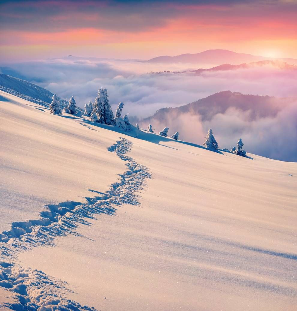 snowy-sunrise.jpg (990×1037)