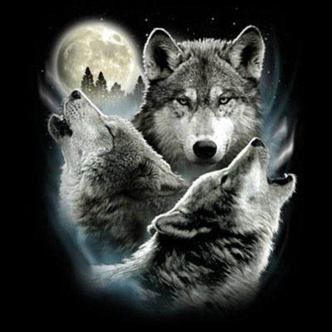 c56de095697a3b3b49c016d380fd67c0 funny animal t shirt three wolf moon 3 wolves howling tee wolf