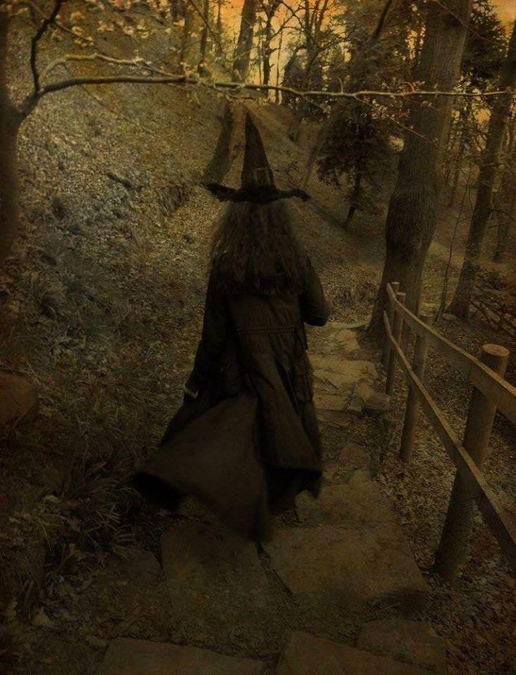 único Esos Ojos De Vidrio Esa Niebla Brujas Volando Brujas Brujas De Halloween