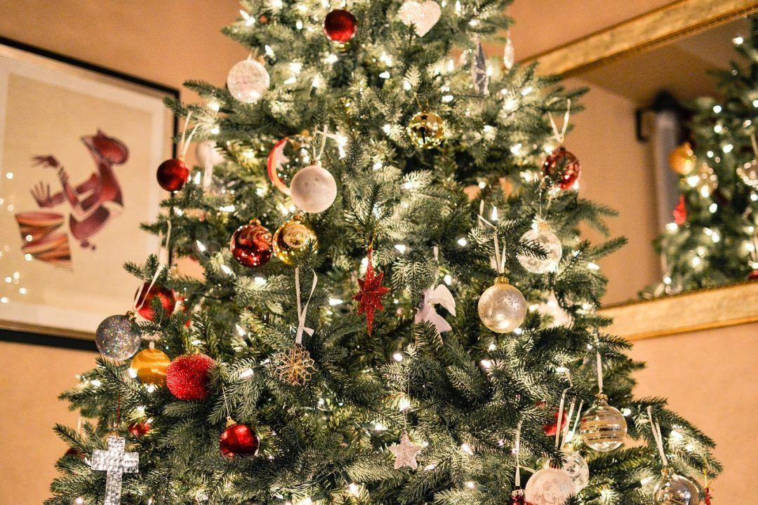 Bozanstvene Ideje Za Dekoraciju Novogodisnjih Jelki Live Christmas Trees Green Christmas Tree Christmas Tree Decorations