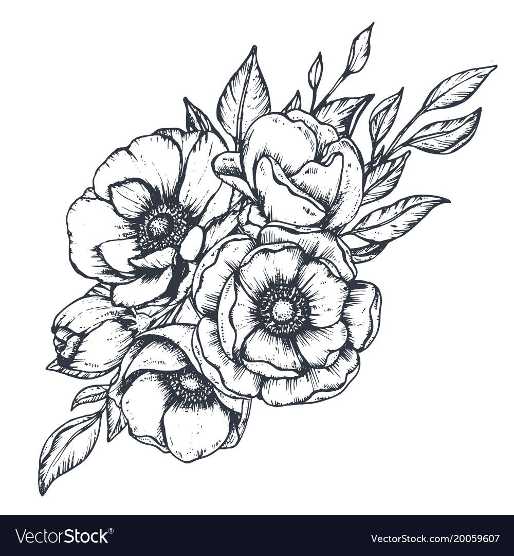 Floral Composition Of Hand Drawn Anemone Vector Image On Vectorstock In 2020 How To Draw Hands Flower Vector Art Anemone Flower