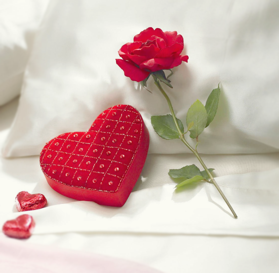 Infinita beleza heart cuore coração pinterest