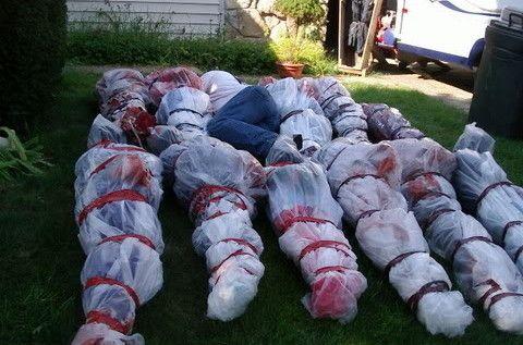 Saca la basura decorando el césped con bolsas de cadáveres Scary