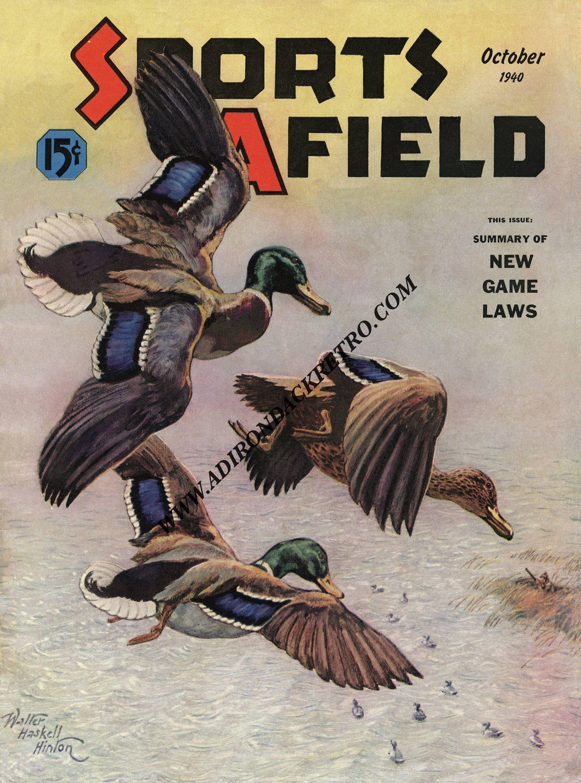1947 Sports Afield Magazine New Metal Sign Know Your Ducks Art Print