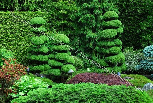 Topiary hedge sculptures garden pinterest gardens for Topiary garden designs