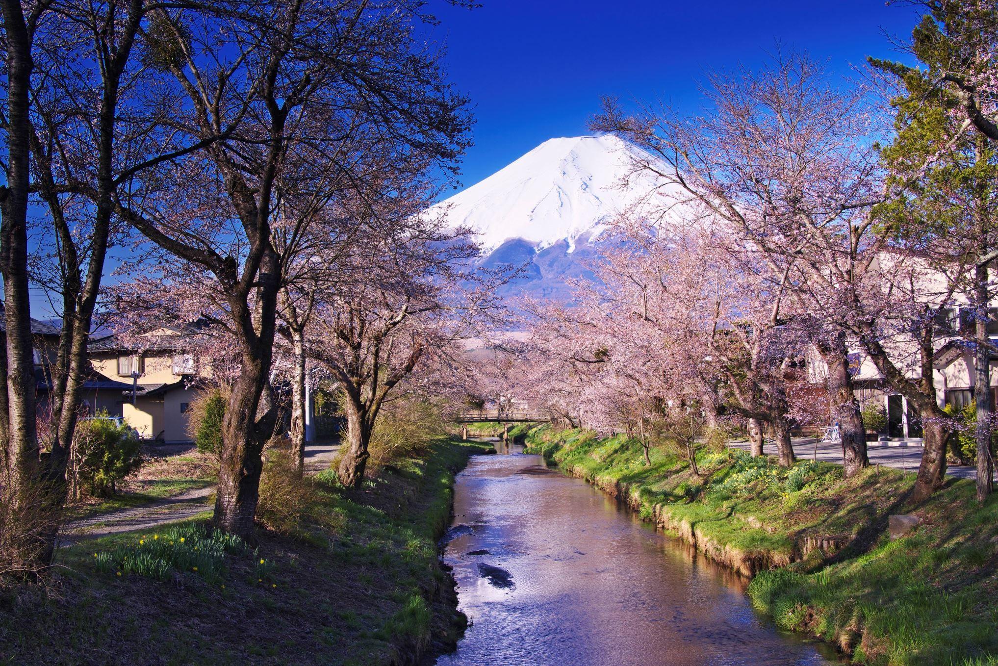 Αποτέλεσμα εικόνας για Εθνικό πάρκο Fuji-Hakone-Izu- στην Ιαπωνία