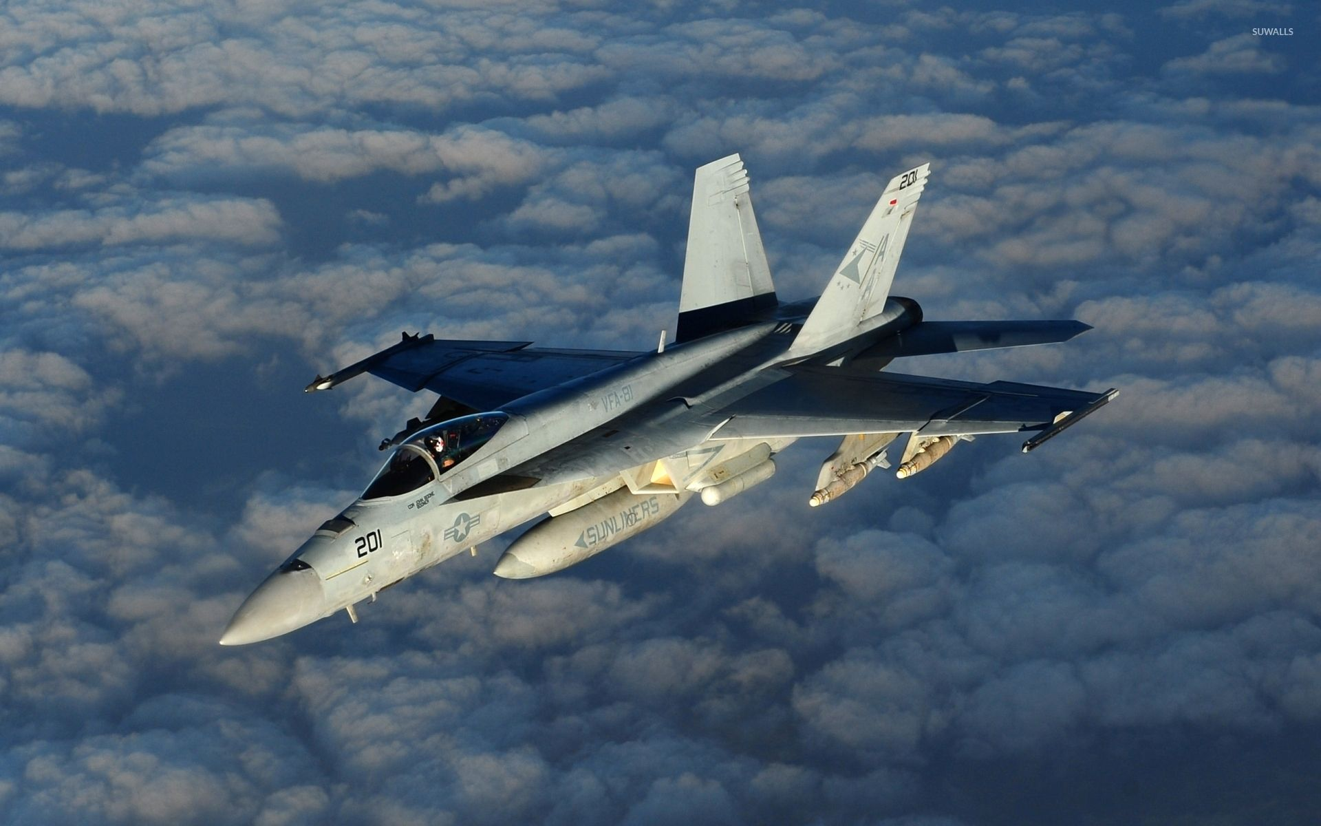 Обои Самолёт, истребитель, falcon, перед, fighting. Авиация foto 18