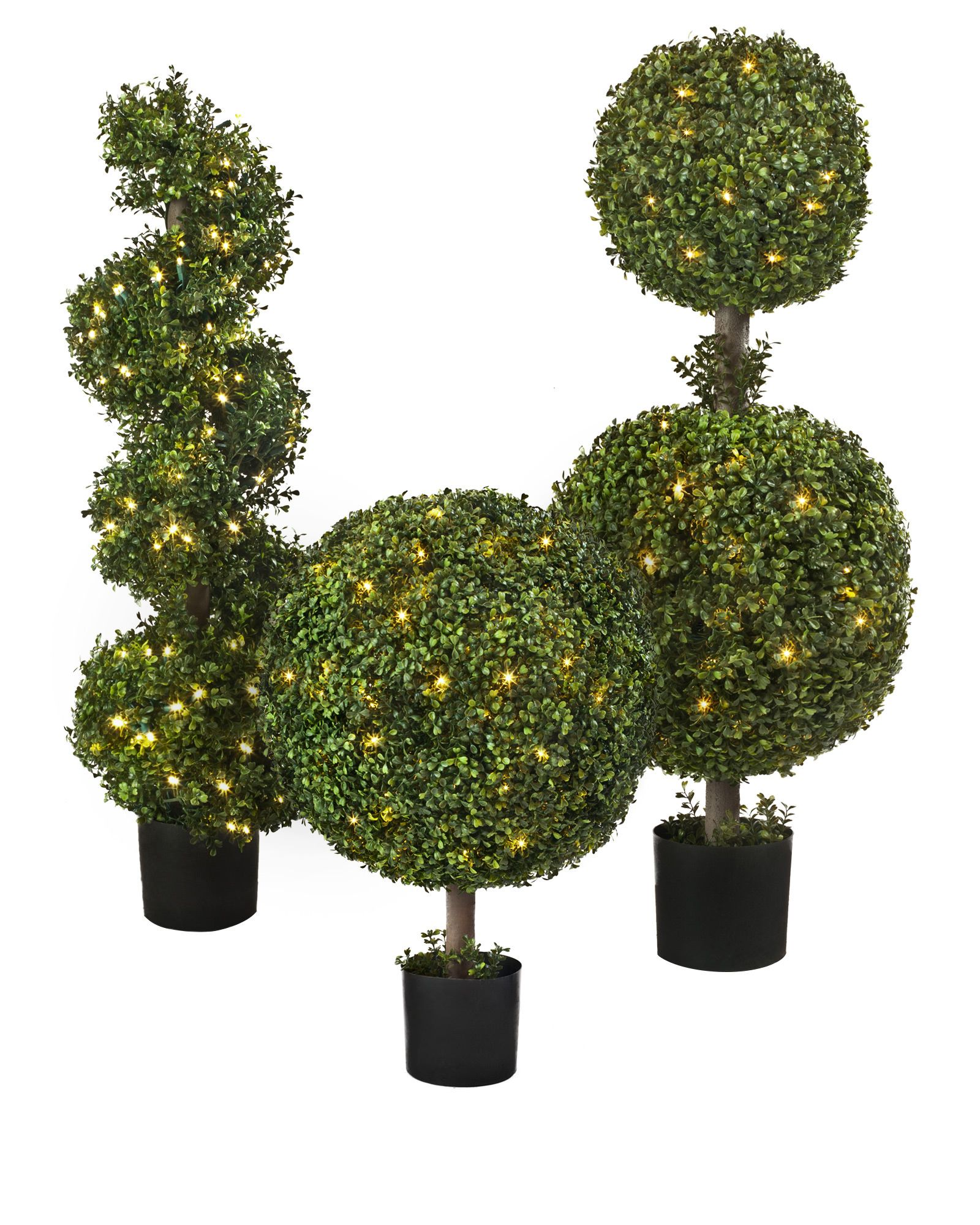 Battery Operated Boxwood Topiary - Balsam Hill