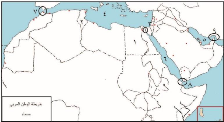 الاجتماعيات 81234 المهمة الثانية Diagram Map Bull