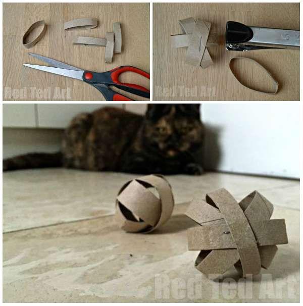 jouet chat rouleau papier toilette