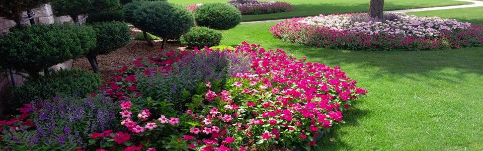 images of landscaping