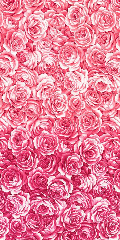 Equilter Joie De Vivre Ombre Bed Of Roses Cool Rose Pink Flower Wallpaper Rose Wallpaper Iphone Wallpaper Coolest rose flower hd wallpaper