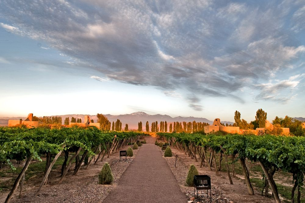 Insider S Travel Guide To Mendoza Argentina S Wine Country