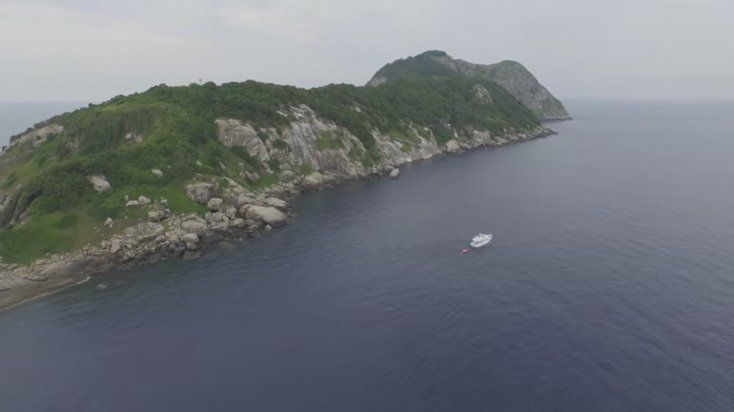 La isla prohibida de brasil que es la ms peligrosa del mundo entero la isla prohibida de brasil que es la ms peligrosa del mundo entero altavistaventures Choice Image