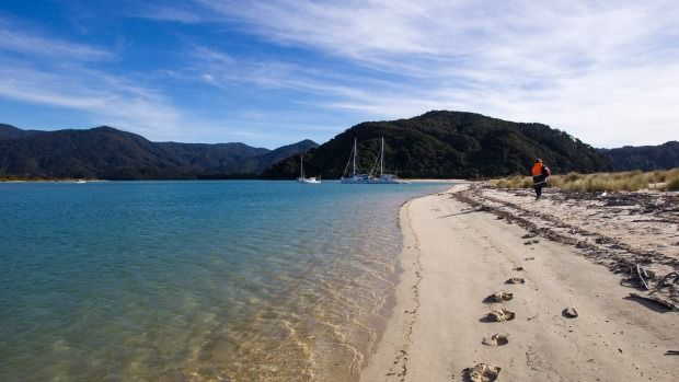La increíble fuerza del crowdfunding: 40.000 nuevo zelandeses compran conjuntamente Awaroa Beach - http://www.renovablesverdes.com/la-increible-fuerza-del-crowdfundin-40-000-nuevo-zelandeses-compran-conjuntamente-awaroa-beach/