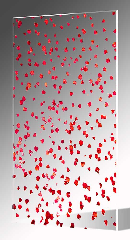 Rose Petals In Acrylic Sheets