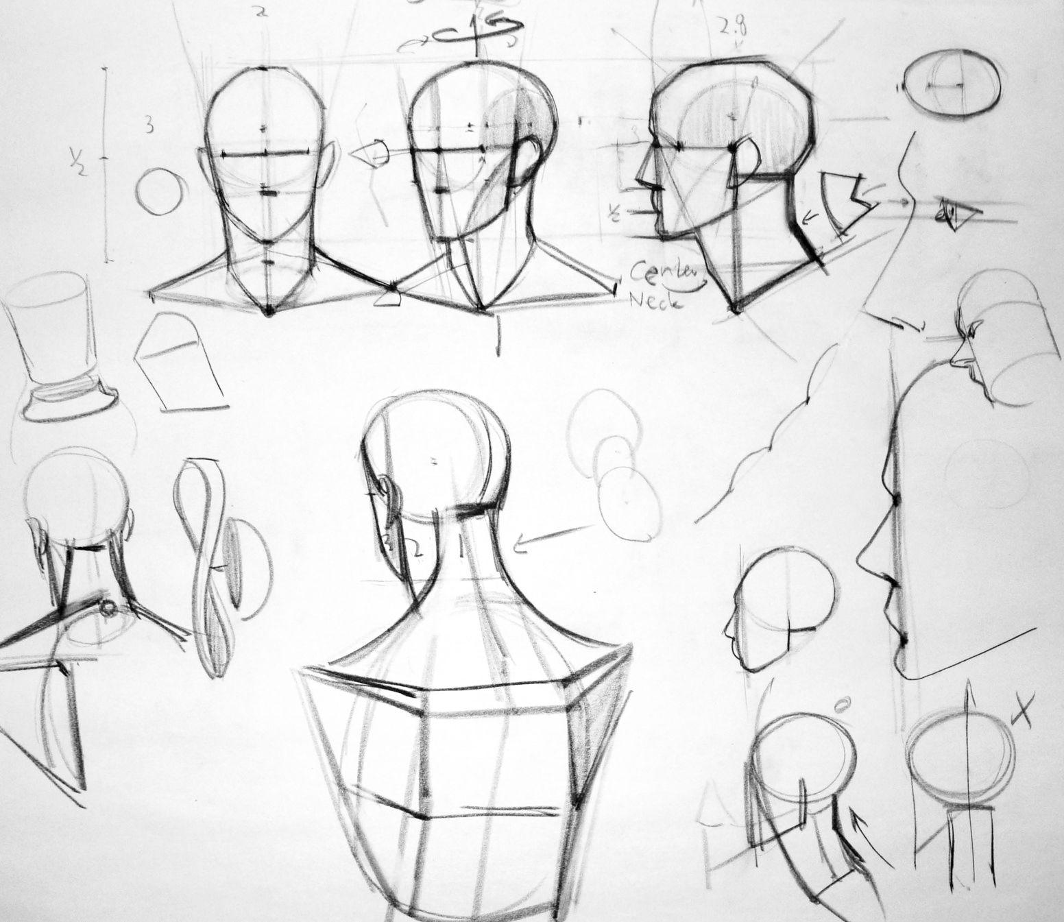 Pinterest Anatomy Anatomy Drawing And
