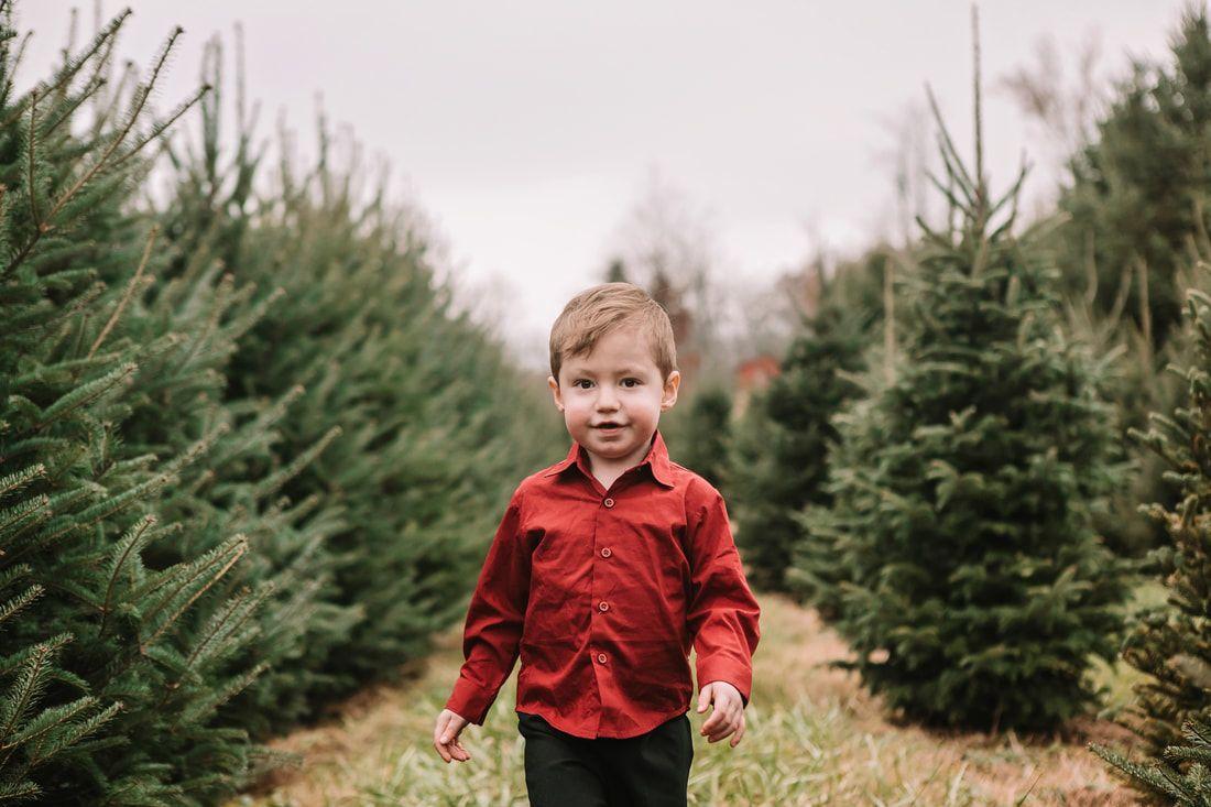 Christmas Mini Session At A Christmas Tree Farm In Cincinnati Ohio Www Akakeb Com Tree Christmas Christmas Mini Sessions Photography Christmas Tree Farm