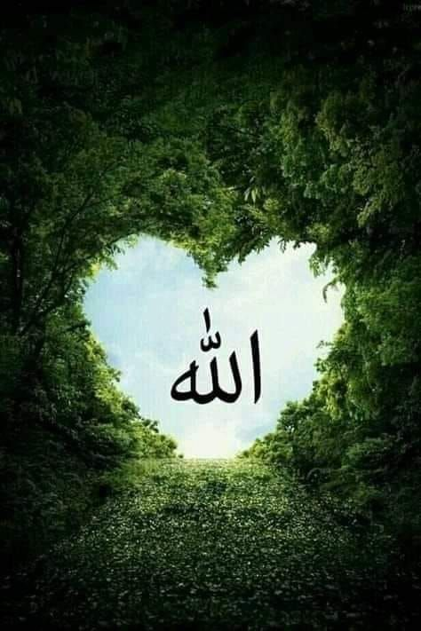 Quran Surah Al-Kahf Amazing Recitation Tilawat of Holy Quran سورة الكهف