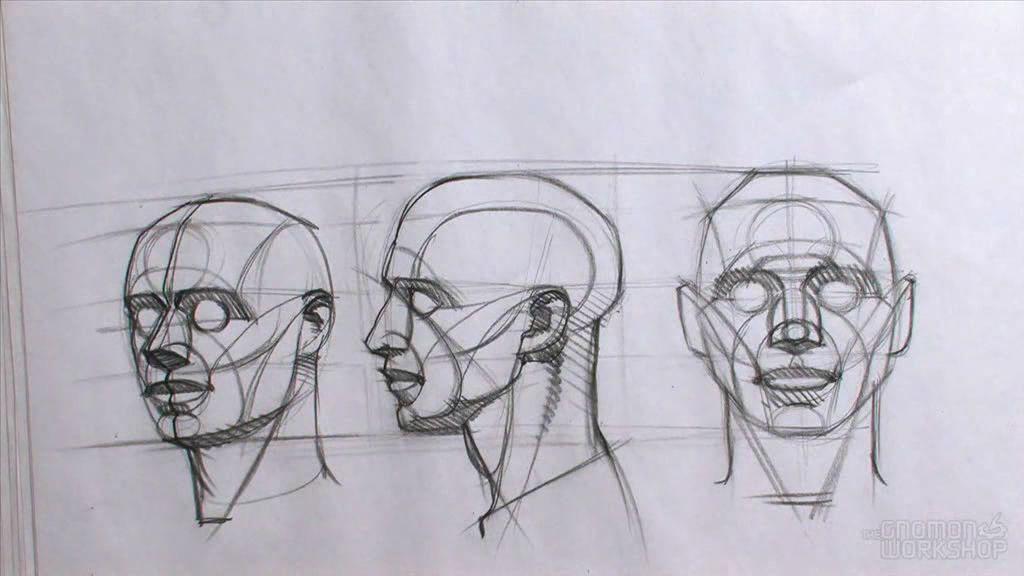 Line Drawing Of Human Face : Gnomon ron lemen drawing the male portrait avi snapshot