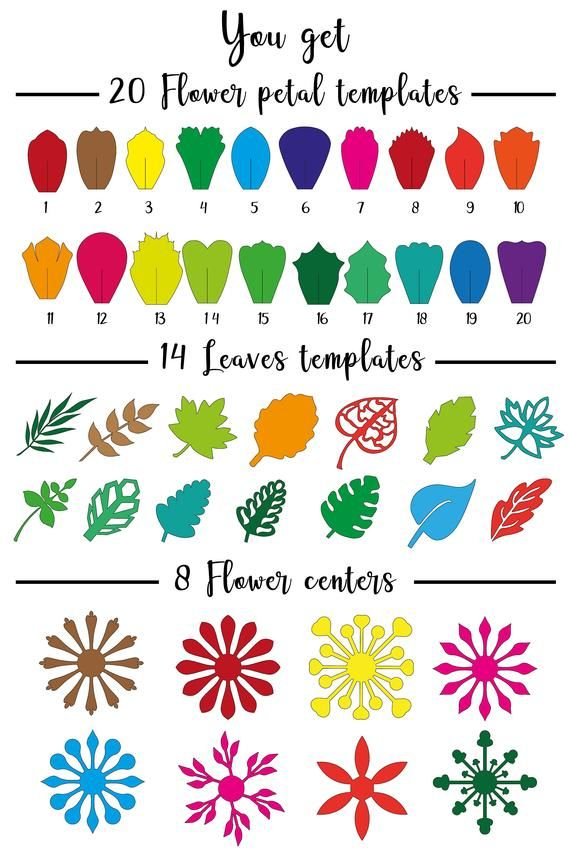 Paper Flower Template, SVG and Printable PDF 20 Set Floral Template, diy Paper Rose Template, giant paper flowers MCS-1-1