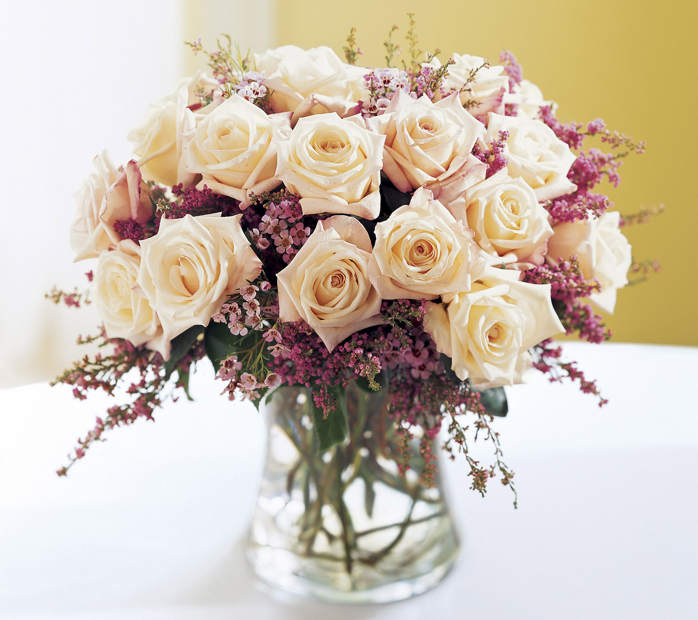 Anniversary Flowers Ftd Monticello Rose Premium Bouquet The Beauty Of These 18 Roses Is Accentuated By Soft Pink Waxflower