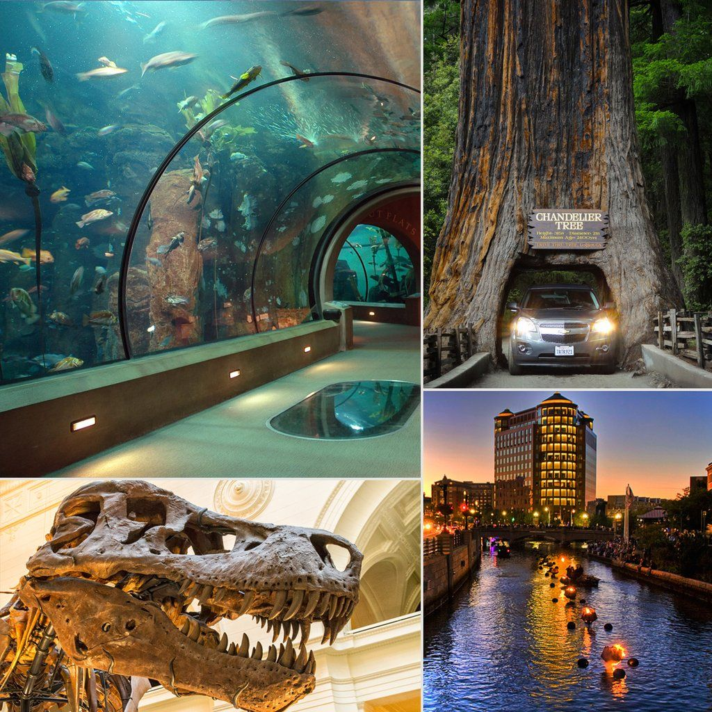 plan your next family road trip across america around these 49