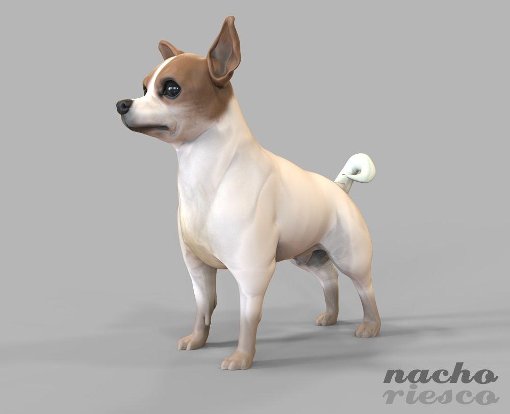 Chihuahua Zbrush & Keyshot | Zbrush | Pinterest | Modelos 3d, 3d y ...
