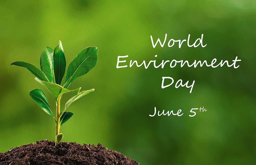 A Small Step To Save The Earth I In Your Hand Do Just One Thing Today Iconearlyphasese Environment Day World Happy Essay On Green